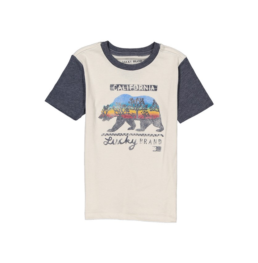 Boys Graphic Print Shirt, Rainy Day Heather