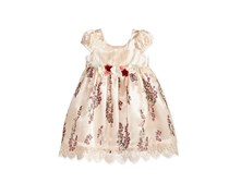 Bonnie Baby Baby Girls Embroidered Empire-Waist Dress, Tan