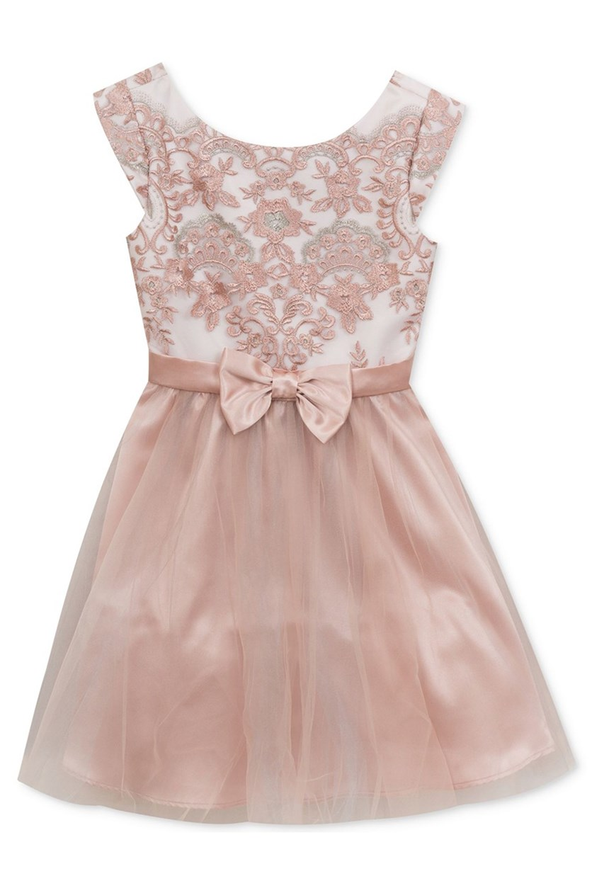 Embroidered Mesh Dress, Dusty Rose