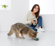 Remote Control Mouse Toy, Grey/Turquoise