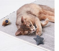 Dento Toy for Cats, Brown/Blue