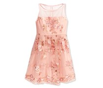 Crystal Doll Embroidered Floral-Mesh Dress, Blush