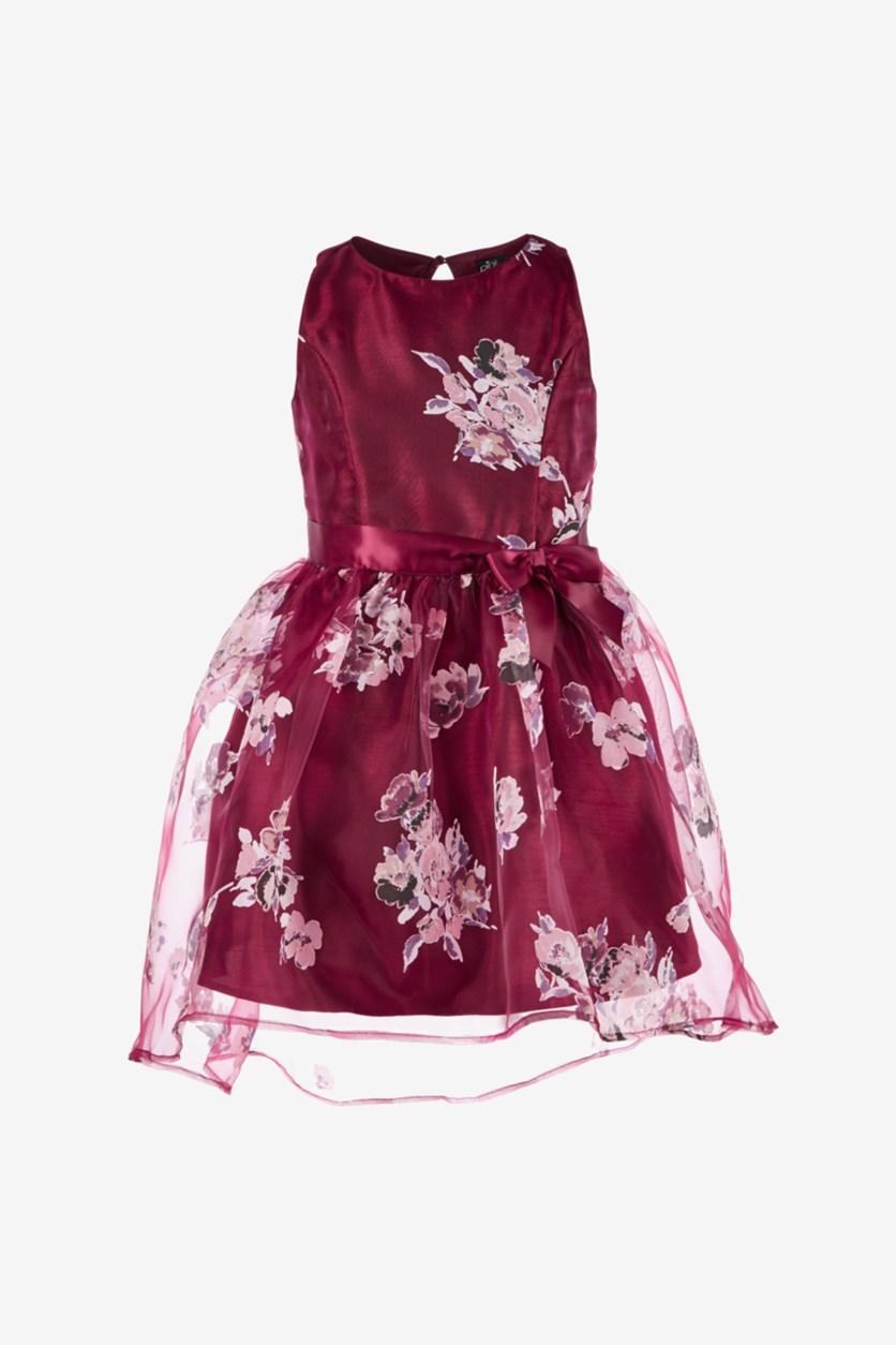 Girls Floral-Print Dress, Burgundy