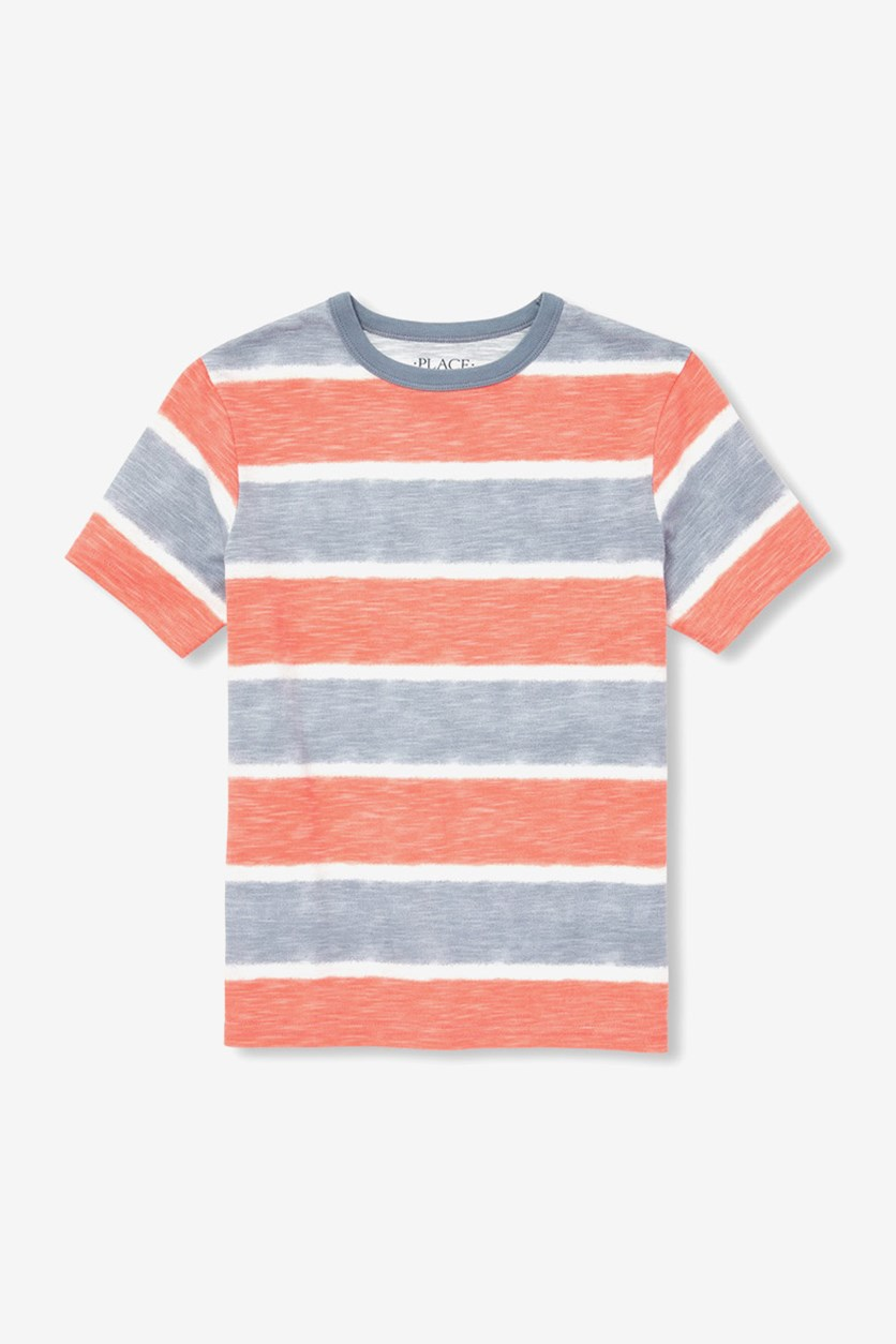 Boy's Short Sleeve Striped Top, Fin Gray