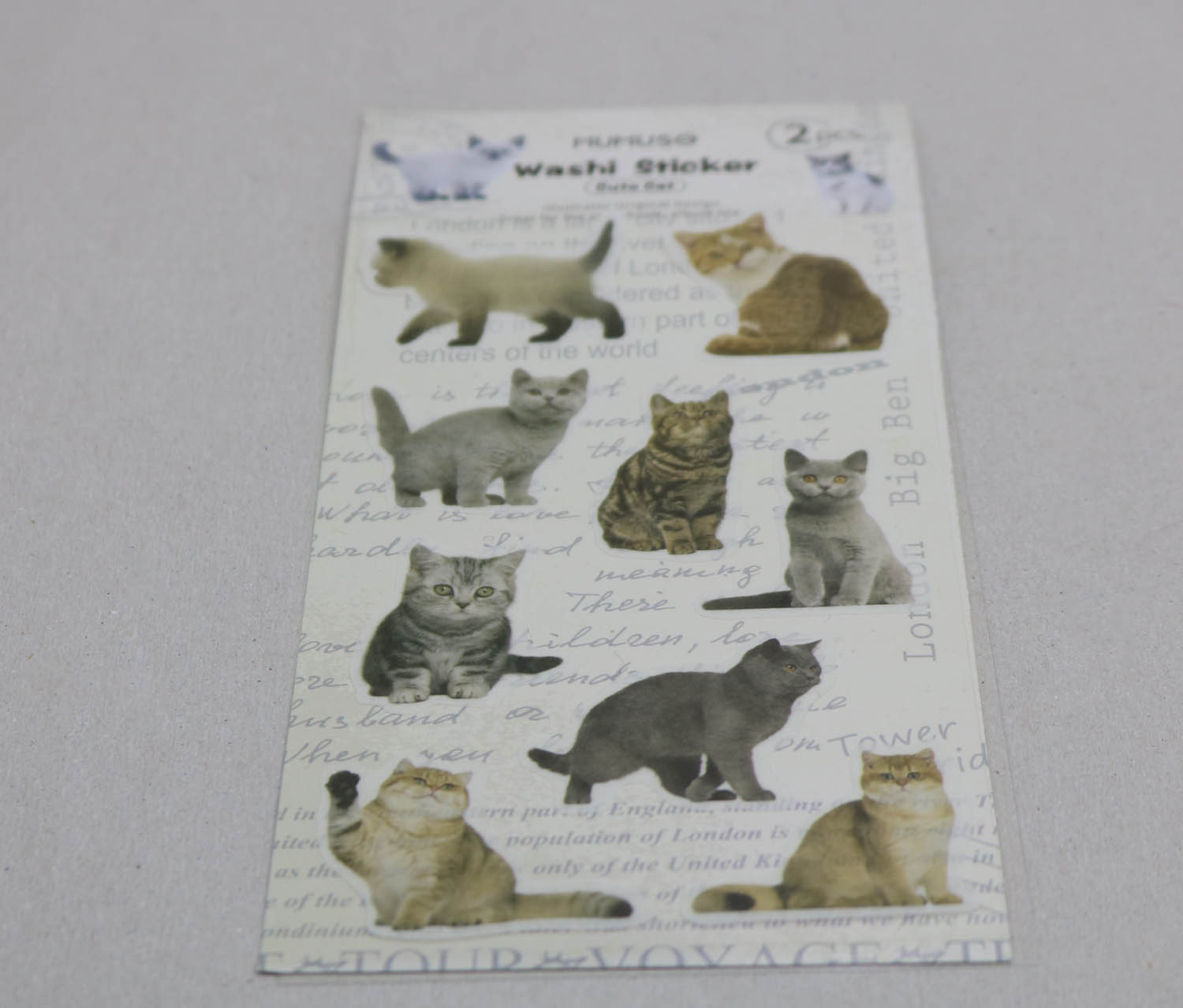 Cute Cat Washi Sticker, White