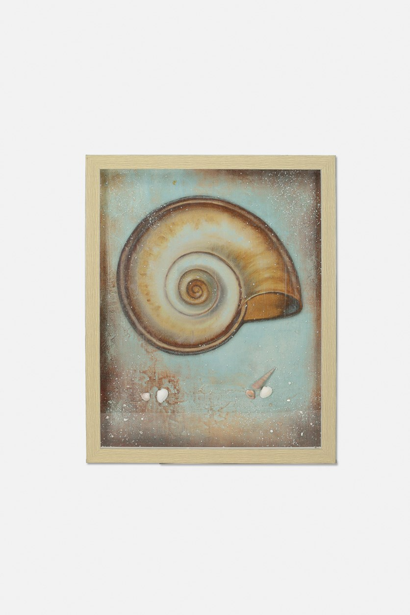 Sea Shell framed Decoration, 54 x 44 cm