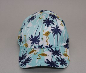 Flamingo Printing Baseball Cap, Light Blue