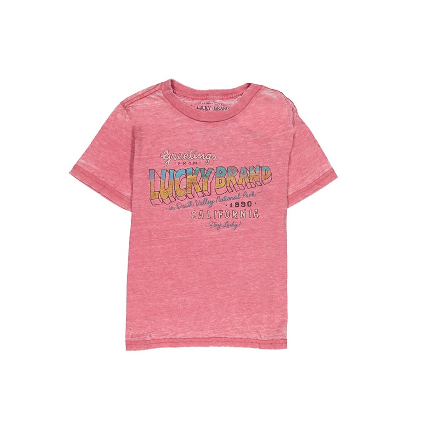 Boy's Graphic Shirts, Garnet Rose