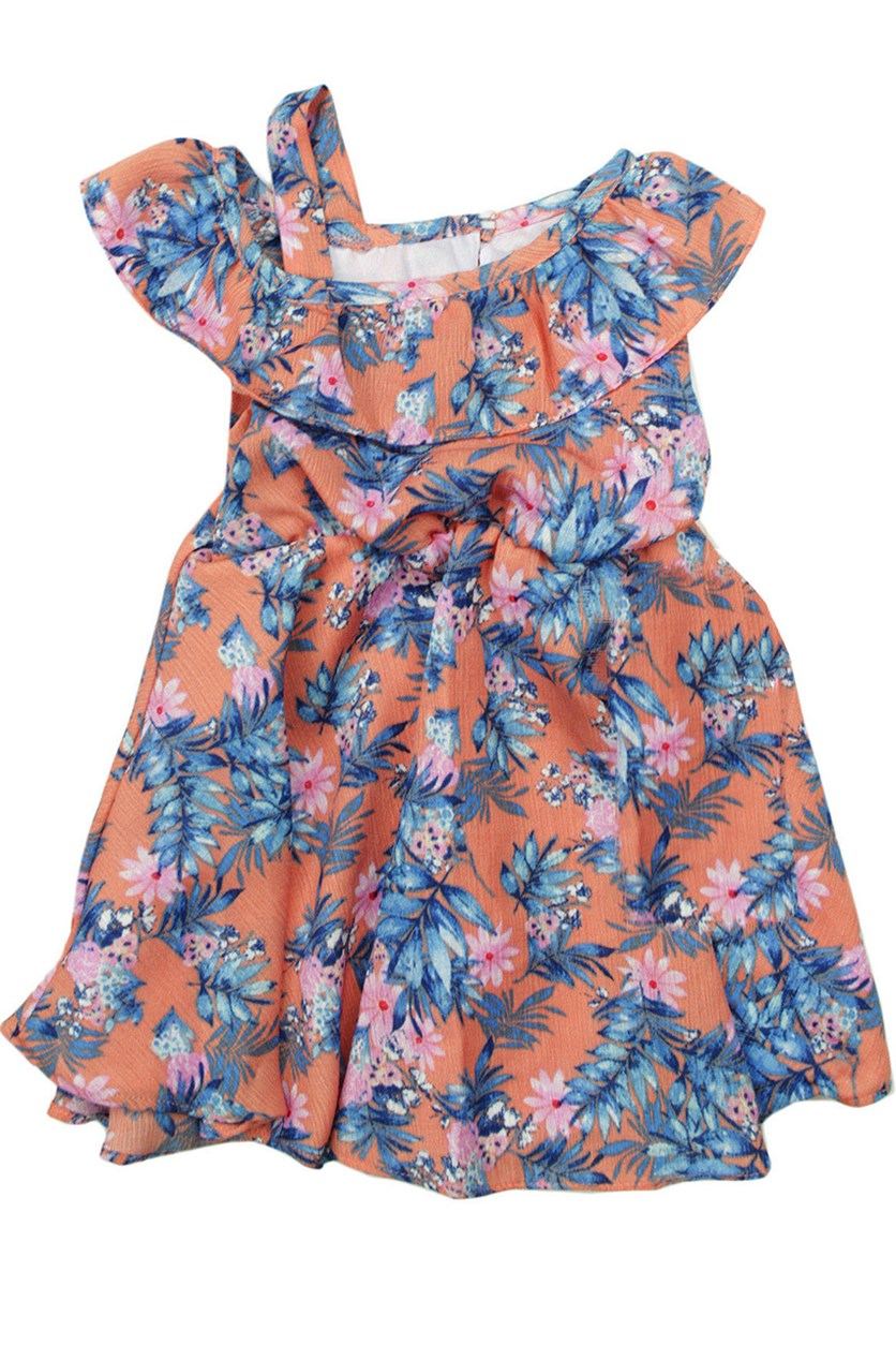 Baby Girls Floral Dress, Peach Combo