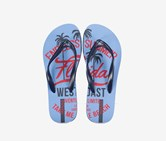Women's Printed Flip flops, Blue