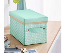 Organiser Box with Lid, Mint green