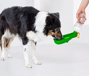 Dog Drinking Bottle To Go,  Lime Green