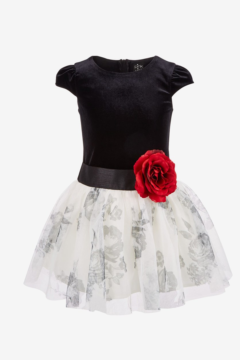Toddler Girls Floral-Print Dress, Black