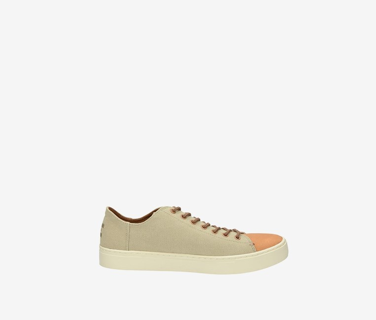 Men's Lenox Sneaker, Taupe/Brown