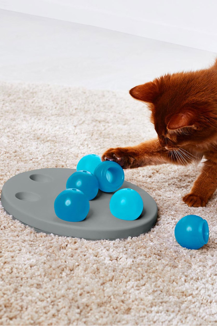 Cat Intelligence Toy, Blue