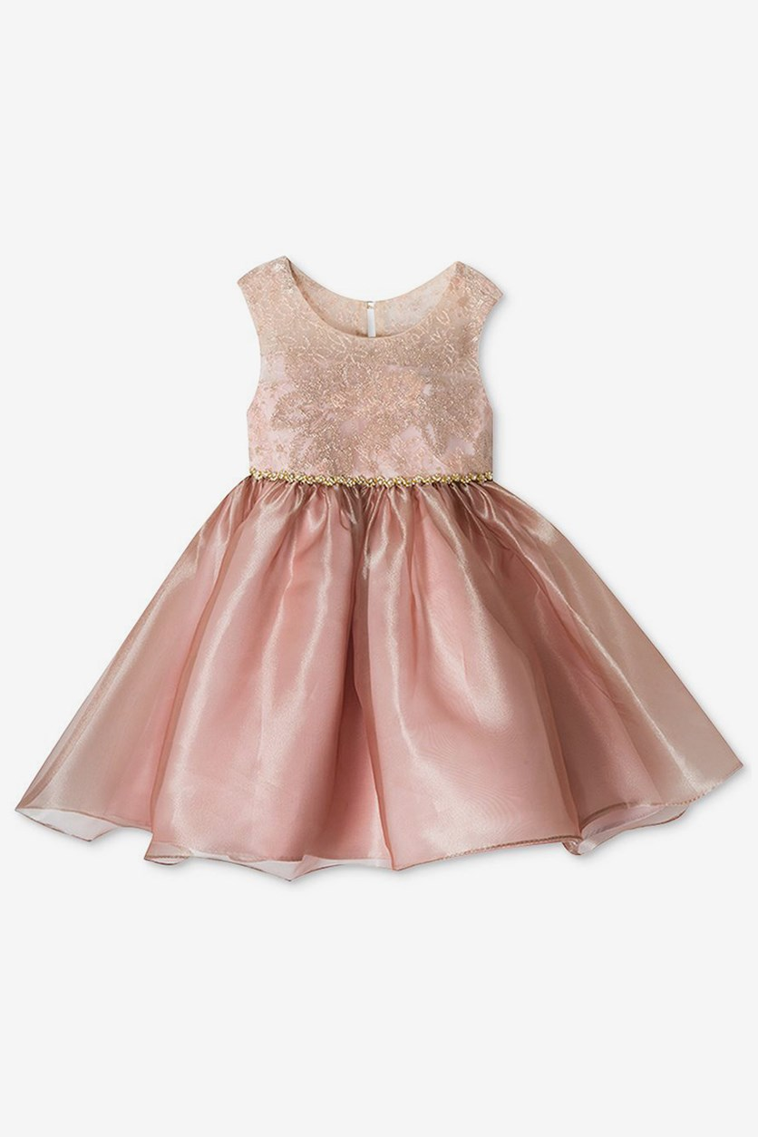 Embroidered & Organza Dress, Gold