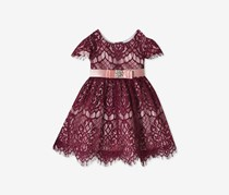 Rare Editions Toddlers Girls Allover Lace Fit & Flare Dress, Maroon