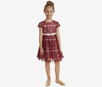 Rare Editions Toddler Girls Lace Fit & Flare Dress, Burgundy