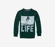 The Children's Place Boys Graphic Sweater, Balt Green