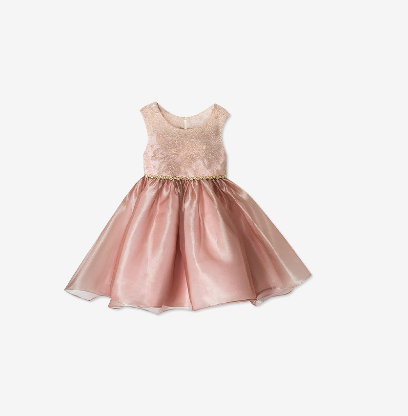Toddlers Girl's Sleeveless Dress, Gold/Blush