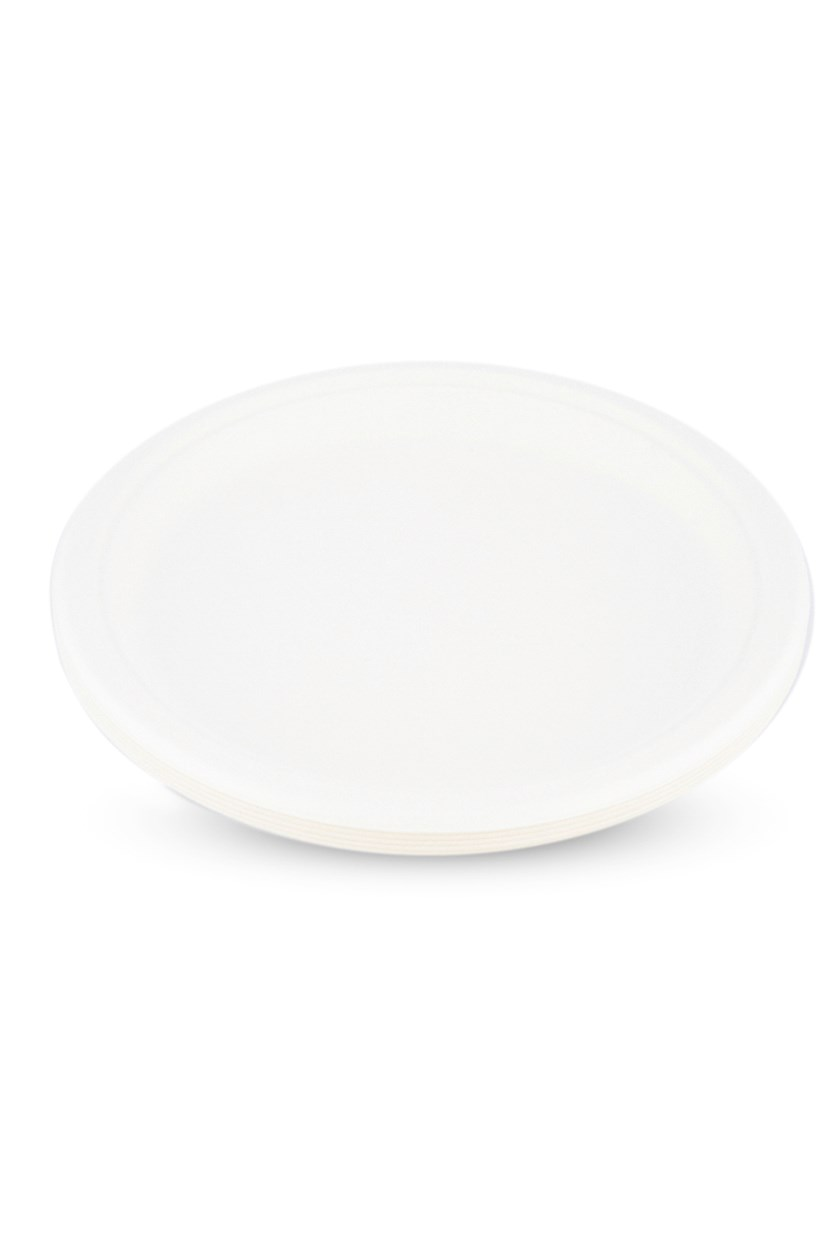 10 Inch Disposable Plates 10 Piece, White