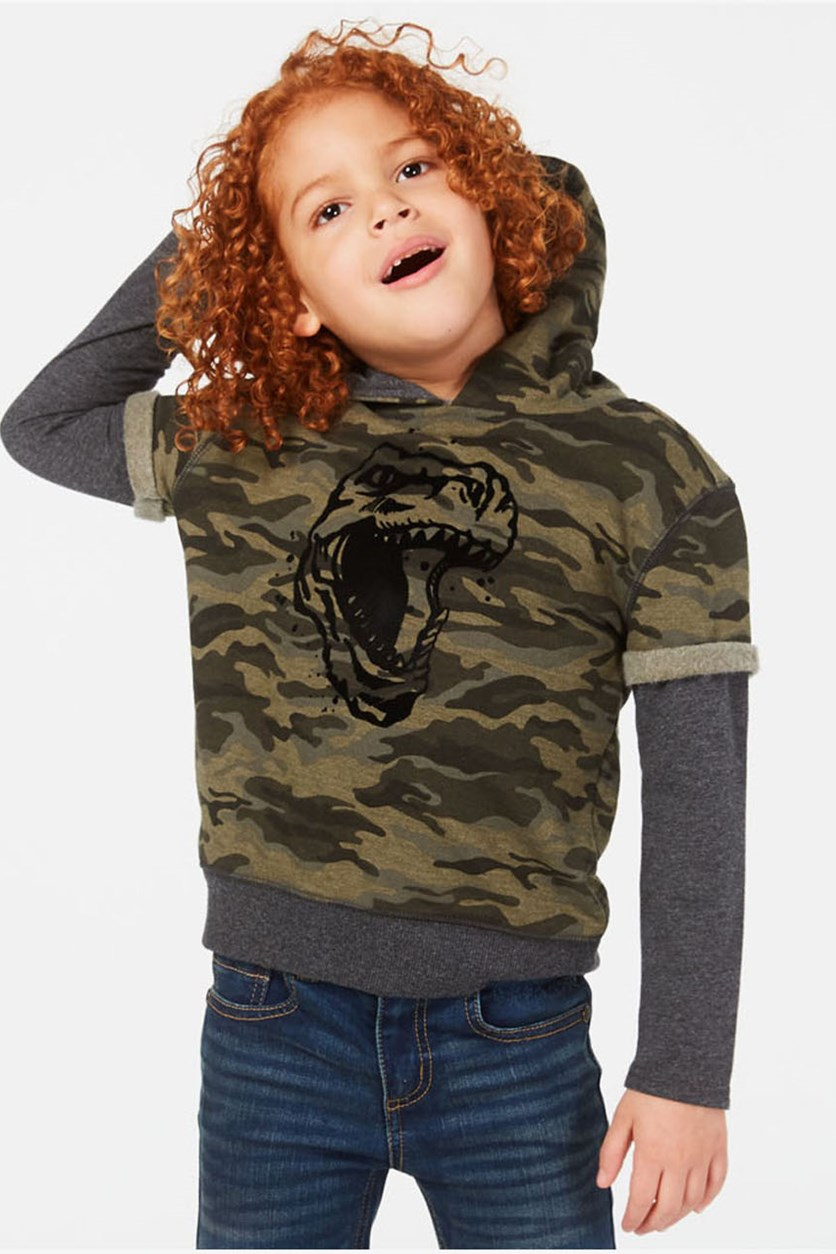Toddler Boys Dino Graphic Hoodie, Spiced Sage