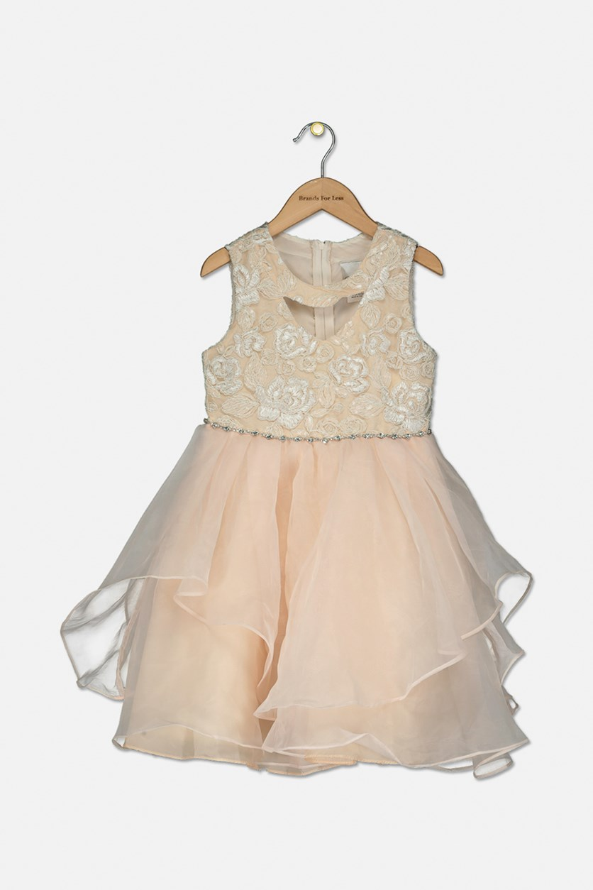 Little Girls Sequin Embroidered Dress, Blush