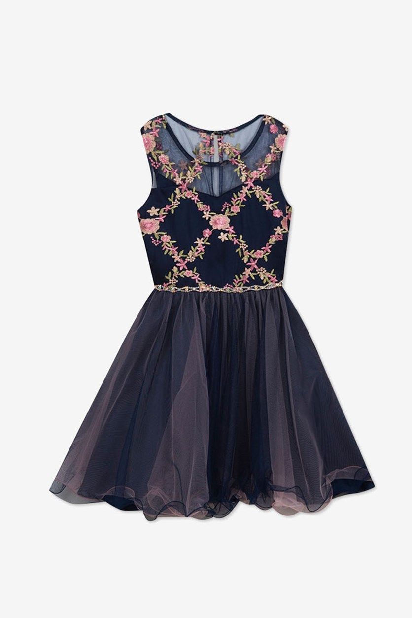 Girls Embroidered Fit & Flare Dress, Navy