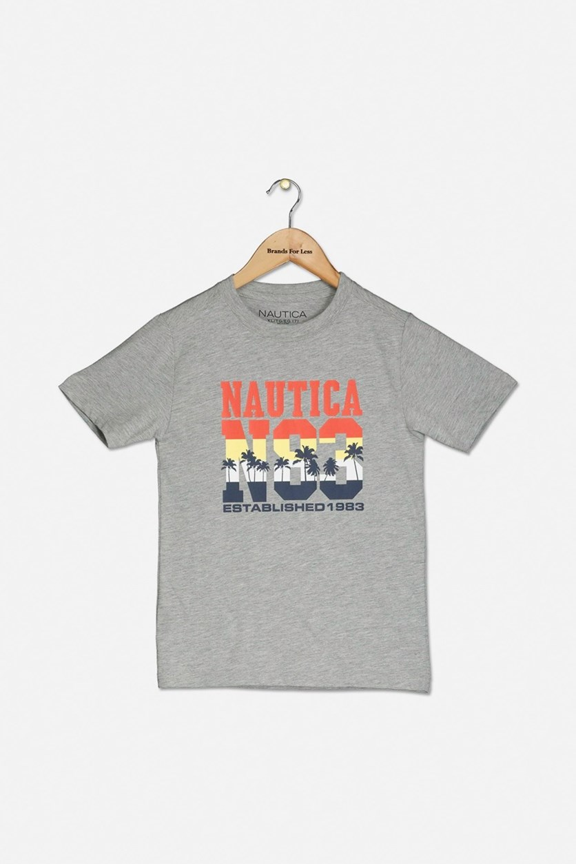 Toddler Boy's Graphic Printed T-Shirt, Grey Combo