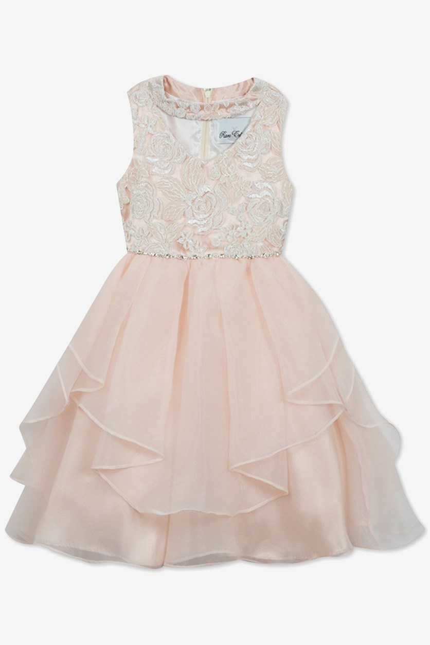 Toddler's Girls Sequin Embroidered Dress, Blush