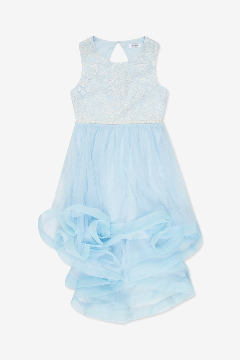Big Girls Plus Embroidered Dress, Sky Blue