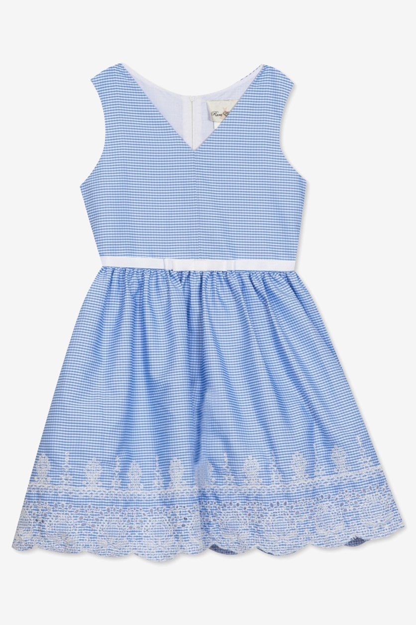Big Girls Plus Embroidered Gingham Dress, Blue