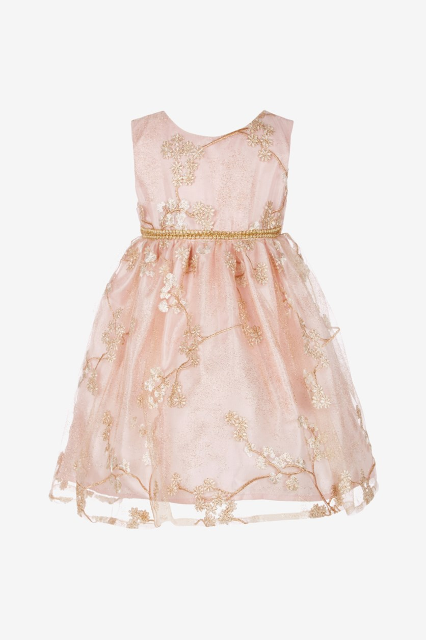 Baby Girls Floral Embroidered Party Dress, Pink
