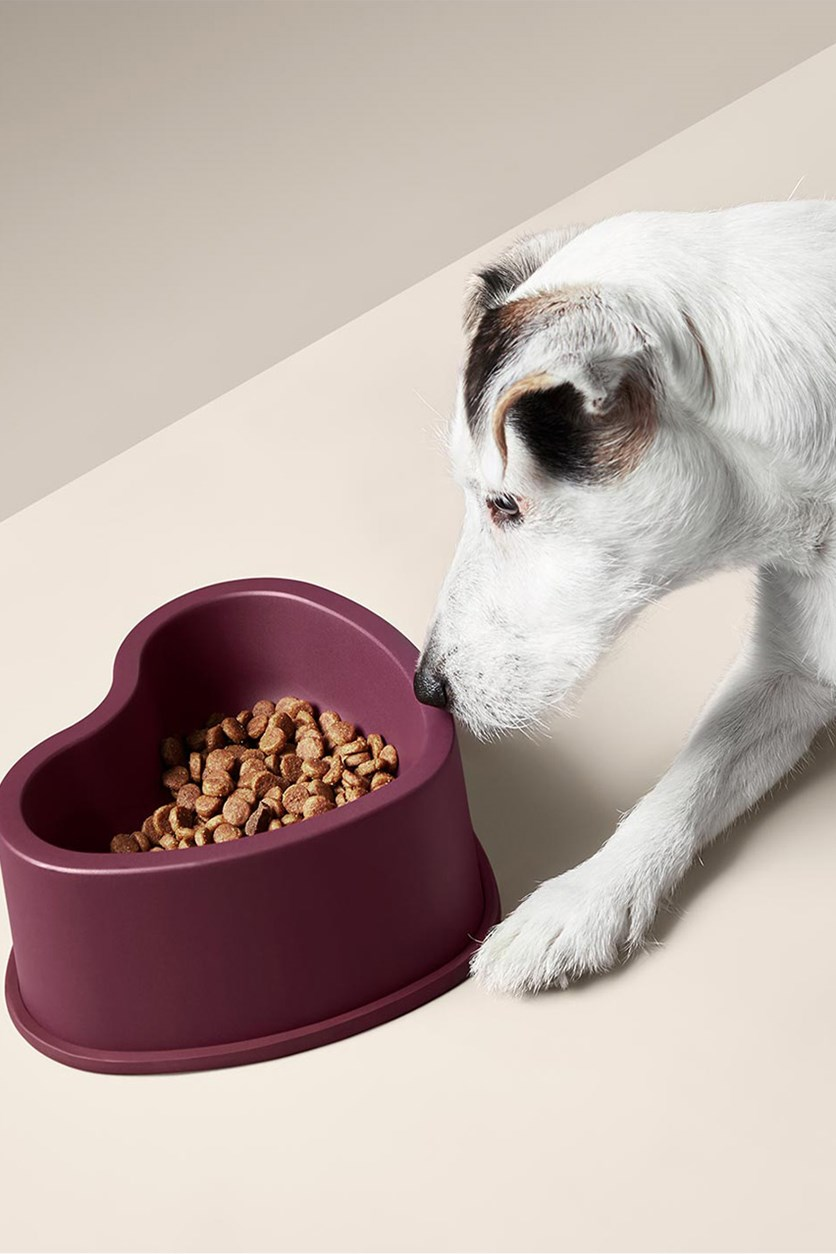Animal Heart Feeding Bowl, Maroon