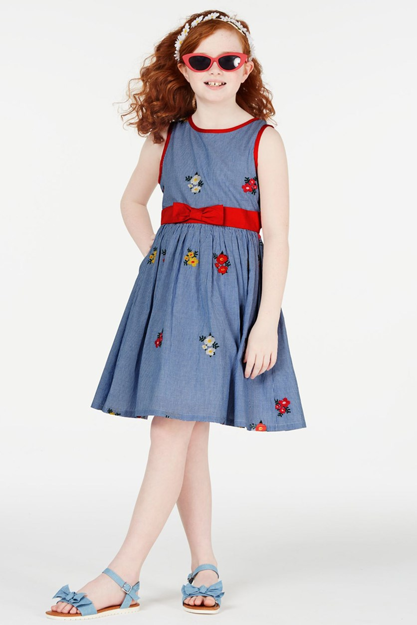 Girls Embroidered Cotton Fit & Flare Dress, Blue Combo