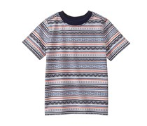 Gymboree Toddler Boy's Southwest Tee, Desert Stripe