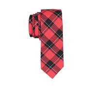 Lord & Taylor Boy's Plaid Tie, Red