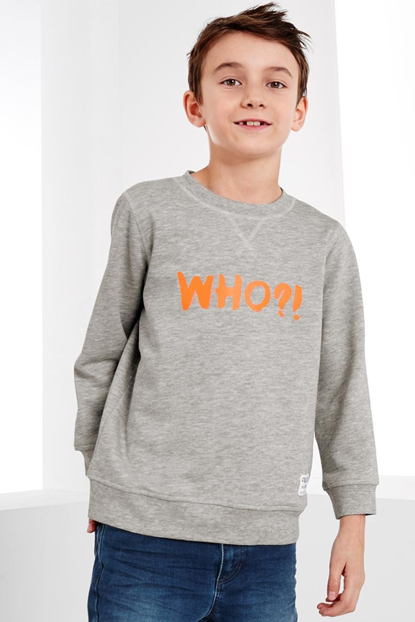 Boy's Sweatshirt, Grey