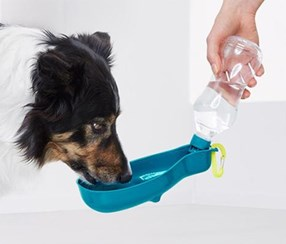 Pet Drinking Bottle, Transparent/Turquoise