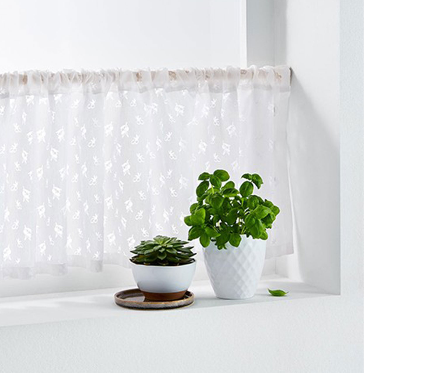 Bistro Curtain 180x46 cm, White