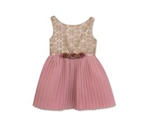 Rare Editions Embroidered Pleated Dress, Blush/Gold