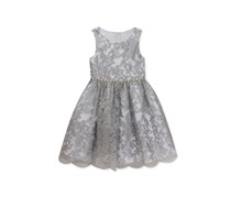 Rare Editions Toddler Girls Embroidered Party Dress, Silver